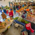 CNY Farmer's Market